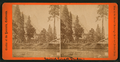 View on the Merced. Hutching's Hotel and Sentinel Rock, by E. & H.T. Anthony (Firm).png
