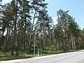 Views of Latvia DSCF4071 - Flickr - davispuh.jpg
