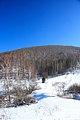 Views of Smolenskiy district of Altai Krai 02.JPG