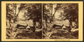 Views on Catawissa Island. (Man sitting on logs, farm in the background.), by Moran, John, 1831-1903.png