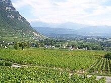 Le vignoble de Chignin (AOC) dans la cluse de Chambéry