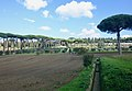 Villa Barberini Pontifical Gardens, Castel Gandolfo (46752904732).jpg