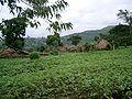 Village in Western Wallega.JPG