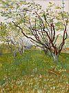 Vincent Van Gogh 0021.jpg