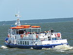 Vistula Lagoon lipiec 2013 6.JPG