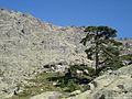 Vue sur le Refuge de Tighjettu (1683 m), au départ de la 5ème étape du GR20.jpeg