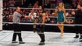 WWE Raw 2015-03-30 18-03-06 ILCE-6000 1590 DxO (17760725043).jpg
