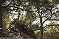 Wachau-Impressionen-170829-62.jpg
