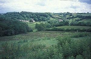 Wambrook - Image: Wambrook geograph.org.uk 27652