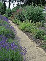 Wanstead & Snaresbrook CC garden path, Wanstead, London .jpg