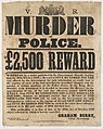 Wanted Poster - Ned (Edward) Kelly.jpg