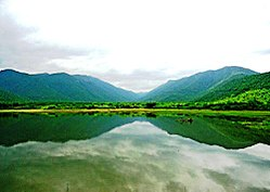 Westernghats river gobi.jpg