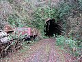 Whitecliff Quarry, Old Railway Tunnel. - panoramio.jpg