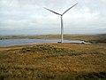 Whitelee Windfarm and Dunwan Dam - geograph.org.uk - 1546207.jpg
