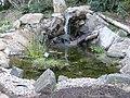 Willamette University Garden.jpg