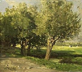 Wilgebomen