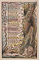 """William Blake - Songs of Innocence and of Experience, Plate 35, """"The Little Girl Found"""" (Bentley 36) - Google Art Project (cropped).jpg"""