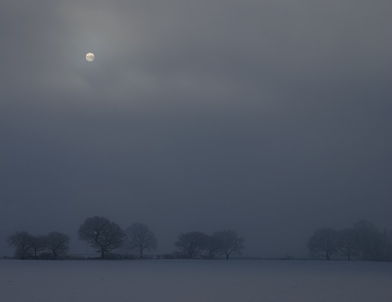 File:Winter sun (5334703199).jpg