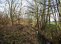 Woodland south of Peckforton - geograph.org.uk - 719380.jpg