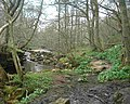 Woods and How Stean Beck - geograph.org.uk - 1327.jpg