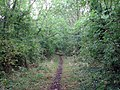 Woolsthorpe, trackbed of the High Dyke Branch - geograph.org.uk - 1468897.jpg