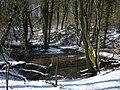 Wuppertal Lüntenbecker Weg 0083.jpg