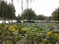 Wuzhong, Suzhou, Jiangsu, China - panoramio (126).jpg