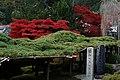 Yoshimine-dera (8256311134).jpg