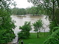 Ypsi Riverside Park flood 2011.JPG