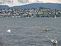 Zürichhorn (Gewittersturm) 2013-06-15 18-01-32 (P7700).JPG