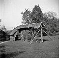 """""""Kozouc anfkar"""" (kozolec s podstreškom z druge strani), Spodnje Trebelno 1951.jpg"""