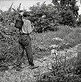 """""""Petlitrko"""" nese na palicah, Ravnik 1961.jpg"""
