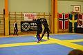 Örebro Open 2015 116.jpg