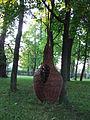 Łucznica - park AL02.JPG