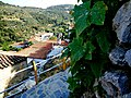 ΚΑΣΤΑΝΕΑ ΒΟΙΩΝ ΛΑΚΩΝΙΑΣ-KASTANEA VION LAKONIAS - panoramio (2).jpg