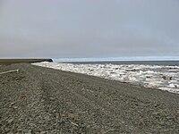 Анабарский залив.jpg