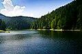 Блакитна вода озера Синевир.jpg