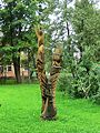 Деревянная скульптура - panoramio (4).jpg