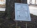 Каштан на території Києво-Печерської лаври.jpg