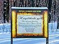 Кочубеївські Дуби у Регіональному ландшафтному парку «Диканський» 8.jpg