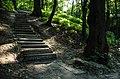 Лестница на тропе Здоровья в ЦПКиО им. Белинского - panoramio.jpg