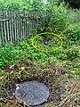 Невская Дубровка август 2011 года. Нечистоты из канализации на улице Набережная - panoramio.jpg