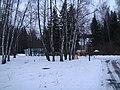 Новогоднее - panoramio.jpg