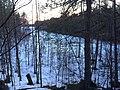 Озеро Микколя.jpg