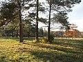 Олександрія - panoramio (10).jpg