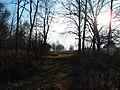 Парк в Спас-Коркодино, от усадьбы ничего не осталось.jpg