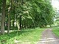 Парк parks (1) - panoramio.jpg