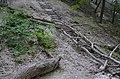 Пещерный монашеский скит в Святогорске 003.jpg