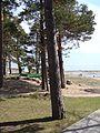 Поселок Репино. Пляж - panoramio.jpg