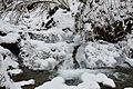 Річка Білий зимою.JPG